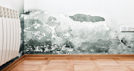 Benefits Of Waterproofing Your Home Interiors